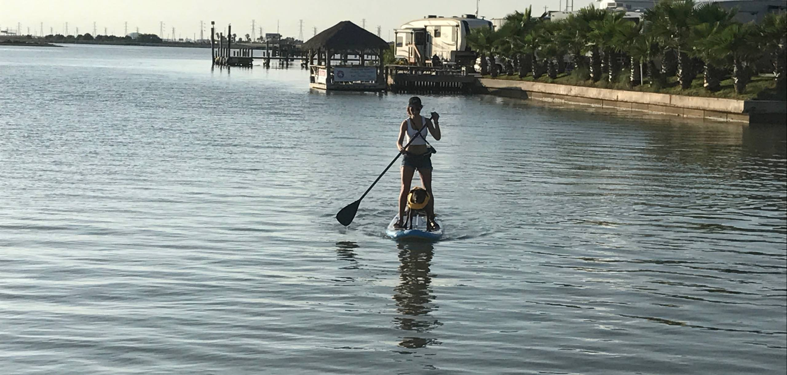 Pet Friendly Paddles Boarding